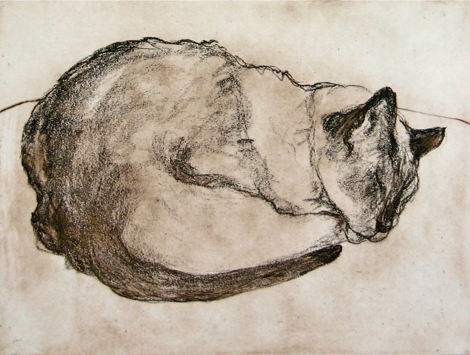 Daisey | 9x12 | Etching
