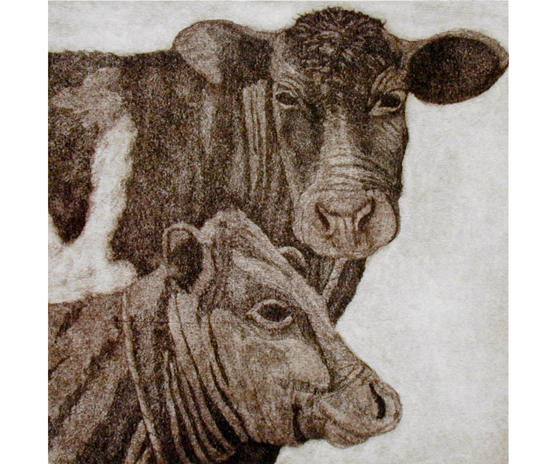 May I Touch Your Nose | 6x6 | Etching